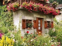 100 Blooming House Wallpapers