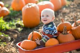 Sand Mountain Pumpkin Patch by The Best Corn Maze And Pumpkin Patch On The Crystal Coast