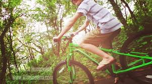 Pumpkin Vine Trail Ride by Pumpkinvine Cyclery In Middlebury Rental And Retail