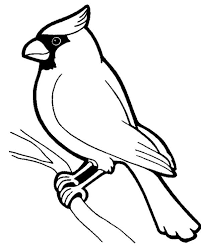 Awesome Bird Standing On Tree Branch Coloring Page