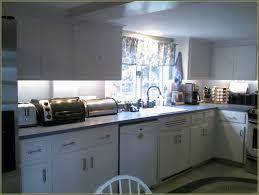 Insl X Cabinet Coat Home Depot by Cabinet Refacing Kit Best Home Furniture Design