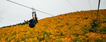 Sunnyside Pumpkin Patch Saratoga by New York Hotels Things To Do Tours Events U0026 More Ny State Travel