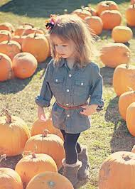 Pumpkin Patch Glendale Co by Pumpkin Patch Ivory Lane Blog My Looks Pinterest Patches
