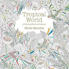 Tropical World Coloring Book Wholesale