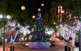 Delancey Street Christmas Trees Santa Monica by Beatiful Tree The Beautiful Tree Part 2812