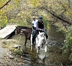 News from Oak Creek Ranch