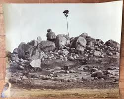 100 Rocky Landscape Tree In C 1860s Old Indian Photos