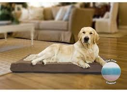 top rated orthopedic dog beds noten animals dog beds and costumes