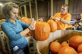 Pumpkin Patch Toledo Ohio by Owners Find A Charitable Thrill Each October On Pumpkin Hill The