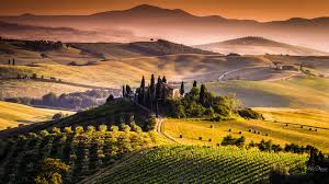 Afternoon In Tuscany Italy