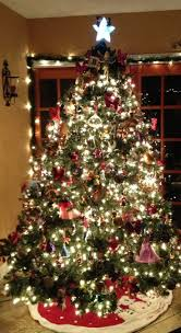 Chicago Christmas Tree Disposal by 75 Best Phenomenal Christmas Trees Images On Pinterest Christmas