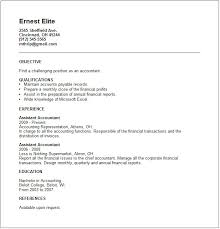 Junior Accountant Resume Example