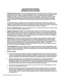 Standard Terms And Conditions For Professional Service Contracts