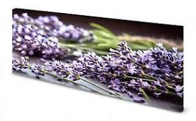 details zu magnettafel pinnwand bild küche kräuter heilkräuter lavendel gekantet