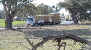 Community Charity Most Powerful As Nation Deals With Drought   The ... Rapid Relief Team Hay From Tasmania To Local Farmers Goulburn Post Trucks Wagon Lorry Rig Tractors Hay Straw Photos Youtube Hay Trucks For Hire Willow Creek Ranch Hauling Bales Hi Res Video 85601 Elk161 4563 Morocco Tinerhir Trucks Loaded With Bales Of Stock Wa Convoy Delivers Muchneed Droughtstricken Nsw Convoy Heavily Transporting Over Shipping And Exporting Staheli West Long Haul As Demand Outstrips Supply The Northern Daily Leader Specialized Trailer On Wheels For Transportation Of Custom And Equipment Favorite Texas Trucking