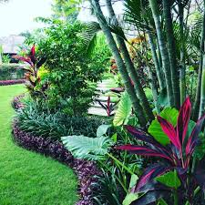 100 Bali Garden Ideas Pin By The Foxtail Estate Amira On The Foxtail Estate