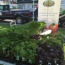 Make A Trashcan Pollinator Garden Container Gardening