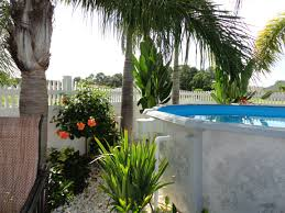 Tropical Pool Planting For Backyard Landscaping In Melbourne, FL ... Tropical Garden Landscaping Ideas 21 Wonderful Download Pool Design Landscape Design Ideas Florida Bathroom 2017 Backyard Around For Florida Create A Garden Plants Equipment Simple Fleagorcom 25 Trending Backyard On Pinterest Gorgeous Landscaping Landscape Ideasg To Help Vacation Landscapes Diy Combine The Minimalist With