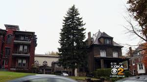Christmas Tree Hill Shops York Pa by City Gets Christmas Tree Its Been Eyeing For Years Cbs Pittsburgh