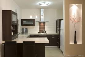 Brilliant Contemporary Dark Wood Kitchen Cabinets Pictures Of Kitchens Modern