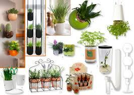 plante chambre déco déco 10 astuces green pour votre studio l etudiant trendy