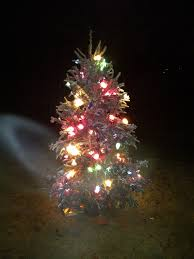 Stew Leonards Christmas Tree Hours by Cedar Posts And Barbed Wire Fences 12 1 11 1 1 12