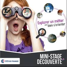 stage creation entreprise chambre des metiers orientation métier choix orientation après la 3ème avec cci fr cci fr