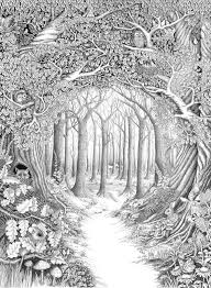 Pin Drawn Forest Colouring 7