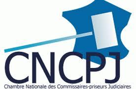 chambre nationale commissaire priseur un nouveau président à la chambre nationale des commissaires