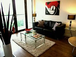 Apartment Living Room Decorating On A Budget Brilliant Design Innovative Modern With Ideas Cuantarzon Creative Images