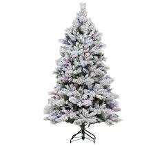 Qvc Pre Lit Christmas Trees by Ed On Air Santa U0027s Best 6 5 U0027 Flocked Spruce Tree Ellen Degeneres