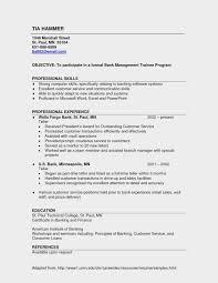 Resume Example For Bank Teller New Sample