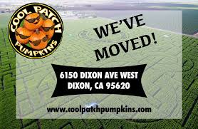 Pumpkin Patch Dixon Il by Cool Patch Pumpkins Home Facebook