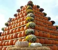 Pumpkin Picking Nj by Fun Fall Activities Guide Apple And Pumpkin Picking Festivals