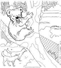 Animal Zoo Coloring Pages Pics Photos Animals And Sheets Can Be