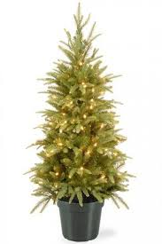 Plantable Christmas Trees For Sale by Best 25 Small Artificial Christmas Trees Ideas On Pinterest