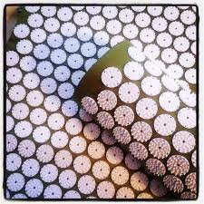 Bed Of Nails Acupressure Mat by 117 Best Bed Of Nails Acupressure Mat U0026 Pillow Images On Pinterest