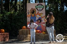 Redlands Fl Pumpkin Patch by Pumpkin Patch U2013 2014 U2013 Pinto U0027s Farm