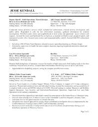 Federal Job Resume Template Government Examples And On Word