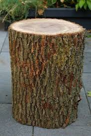 Tree Log Furniture Stumped How To Make A Stump Table Ideas