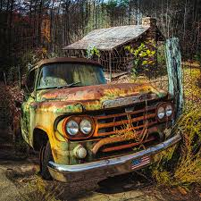 100 1959 Dodge Truck Deep In The Woods Pickup Photograph By Debra