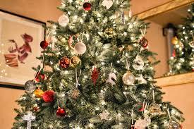 Santa Cruz County Christmas Tree Farms by The Great Christmas Tree Debate Canopy Canopy