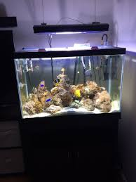 coralife 24 inch aqualight pro reef2reef saltwater and reef