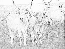 Vache Et Veau Image Vectorielle Evgo1977 © 131055282