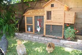 Ana White Shed Chicken Coop by Fancy Chicken Coop
