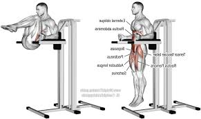 Hanging Leg Raisescaptains Chair Abs by Captains Chair Exercise Benefits 100 Images Are Captain S