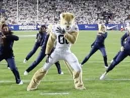 Mascot Cosmo The Cougar