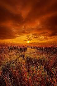 Pumpkin Patch Milwaukee by 500 Best Horizons 1 By Phil Koch Images On Pinterest Scenery