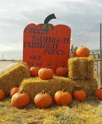 Sand Springs Pumpkin Patch by Green Thumbkin Pumpkin Patch Colorado Springs Co
