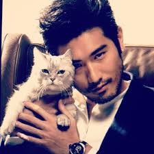 Cant Get Enough Of Magnus Bane Let The New Short Story Cycle Chronicles Fill Void Cassandra Clare Will Collaborate With YA Authors Sarah